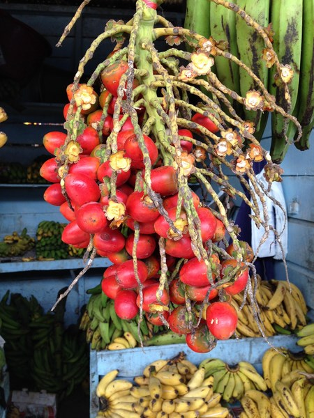 Local fruit shop. Fresh tropical fruits are easily available in the local market