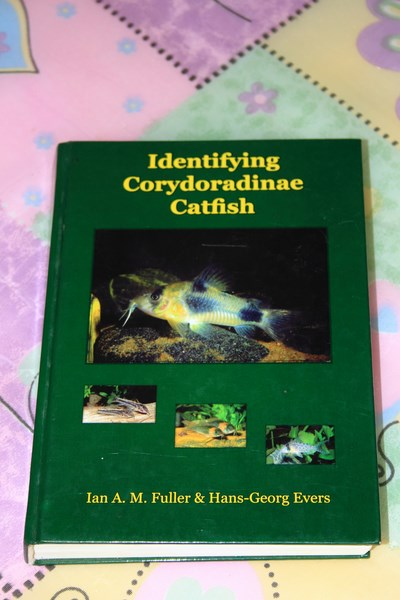 Identifying Coridoradinae catfish