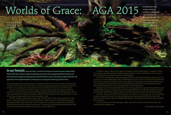 """In our frenetic, warp-speed lives, moments of rare joy are sometimes found unexpectedly in small, utterly calm, primitive worlds of lush foliage and ancient stone and gnarled driftwood. There is magic in planted aquariums; we reveal it in """"Worlds of Grace: AGA 2015"""" by Cheryl Rogers"""