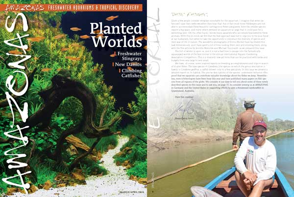 """Preview of the cover of AMAZONAS Magazine, Volume 5, Number 1, and editorial from Editor-In-Chief Hans-Georg Evers. On the cover, """"Autumn River"""", an aquascape from AGA 2015 Competition created by Chaiya Choowa of Bangkok, Thailand."""