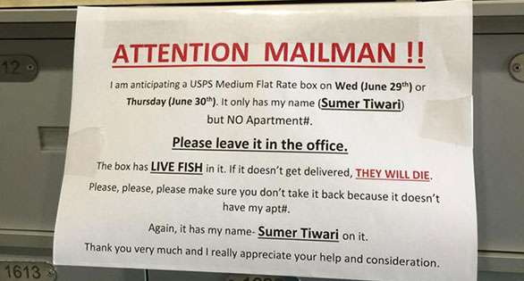 Attention Mailman!!