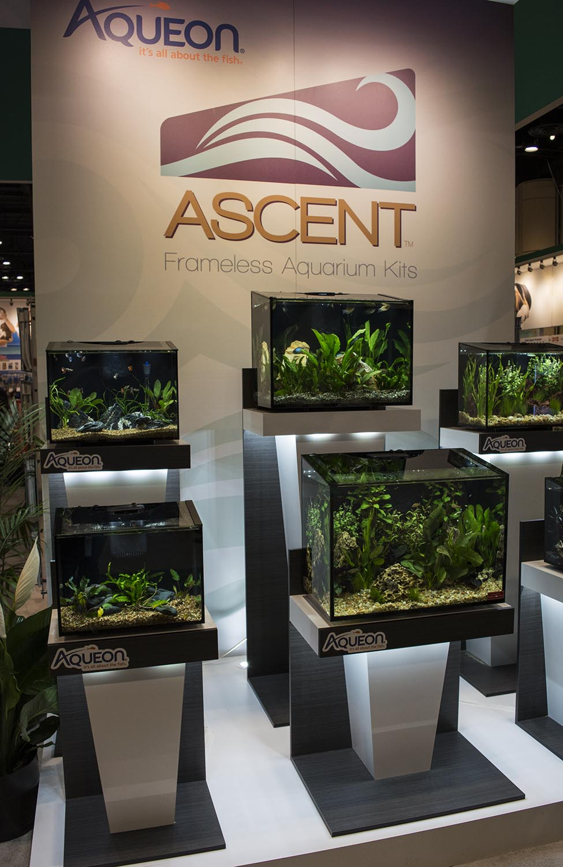 Aquarium product manufactuer Aqueon introduced the new 'Ascent' line of sloped-front glass aquariums at the show
