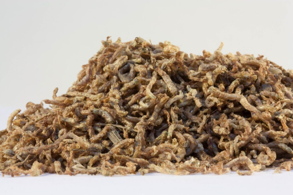 Freeze-dried bloodworms are a popular and highly effective aquarium fish food. Inhaled dust-sized particles from these products could cause a hypersensitive reaction. Image courtesy San Francisco Bay Brand.