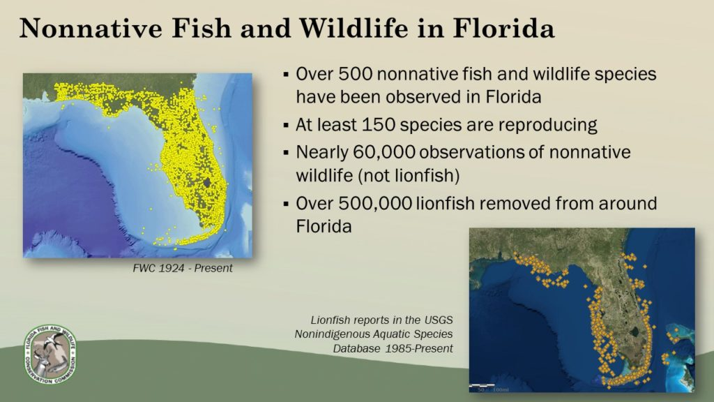 """Status of nonnative species in Florida. From the presentation """"Nonnative Species Overview and Proposed Draft Rules"""""""