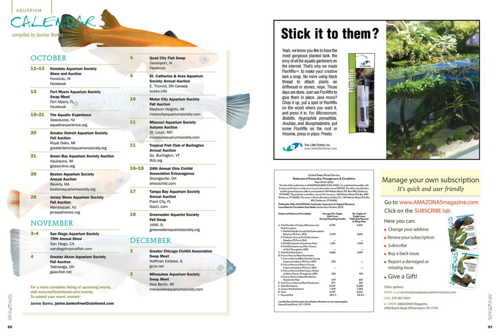 As fall and winter arrive, these aquarium events are a great excuse to get out of the house and reinvigorate yourself in the company of fellow fish geeks! Discover what's happening in the aquarium world through our print and online Aquarium Calendars. Have an event coming up? Send Janine Banks an email so we can let your fellow AMAZONAS readers know about it.