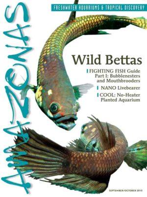 AMAZONAS Back Issues Archives   AMAZONAS Magazine
