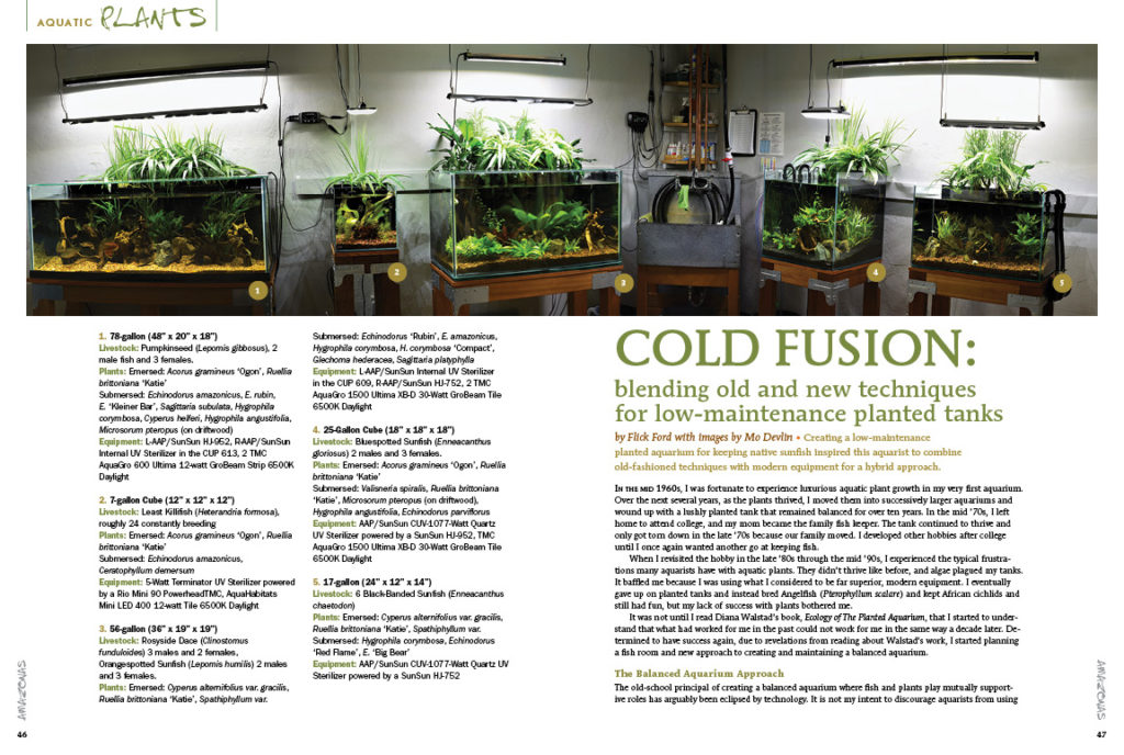 Author Flick Ford explains his hybrid approach to keeping planted aquaria and native fishes. By using old school methods and new age technology, this method is as easy as it is successful. Read all about it in our COLD FUSION article!