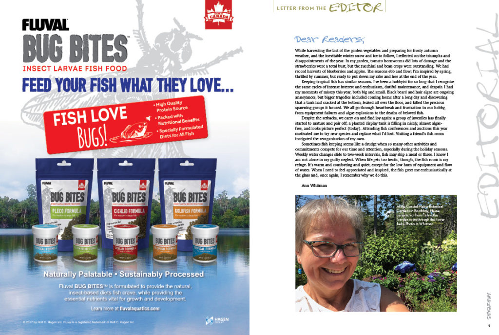 """""""Sometimes,"""" muses Exec. Editor Ann Whitman, """"fish keeping seems like a drudge when so many other activities and commitments compete for our time and attention...when I need to feel appreciated and inspired, the fish greet me enthusiastically at the glass and, once again, I remember why we do this."""" Find more inspiration in Ann's Letter from the Editor."""