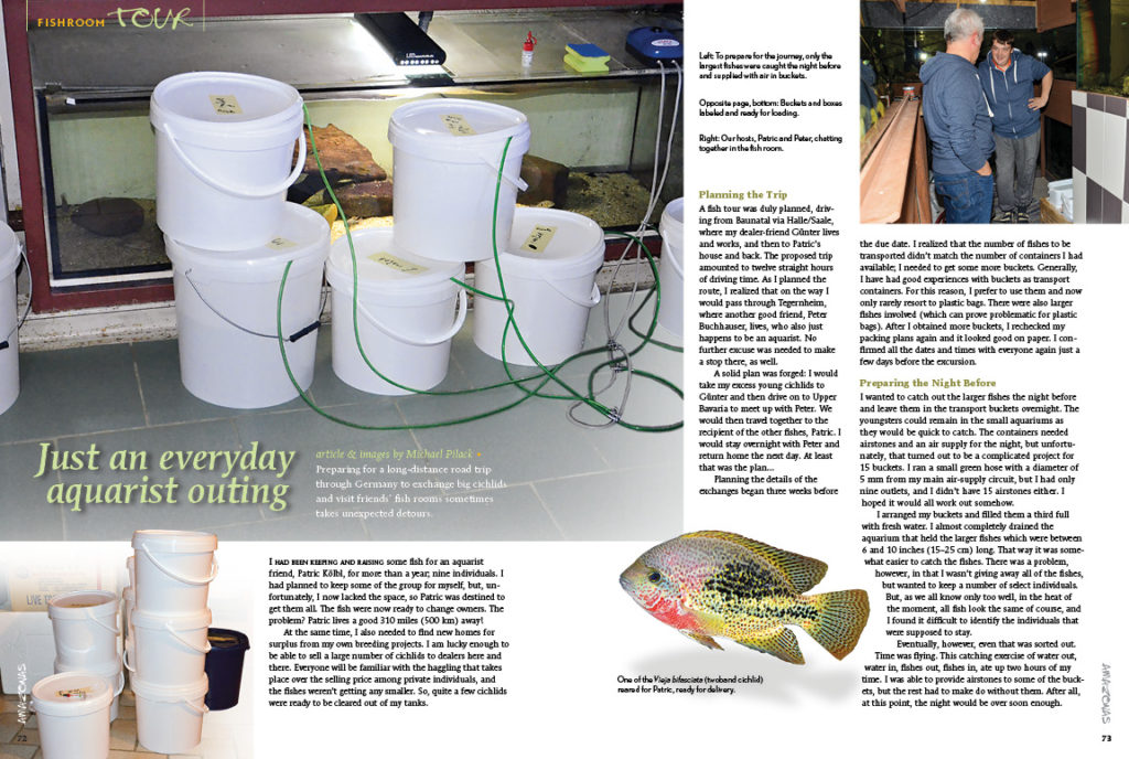Come along for the ride with Michael Pilack: preparing for a long-distance road trip through Germany to exchange big cichlids and visit friend's fishrooms sometimes takes unexpected detours.