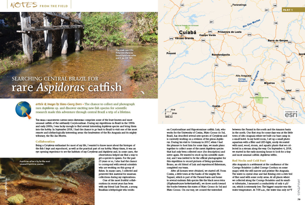 """Author Hans-Georg Evers remarked that, """"The chance to collect and photograph rare Aspirdoras sp. and discover exiting new fish species for scientific research made this adventure through central Brazil a trip of a lifetime."""" Immerse yourself in our Notes From the Field..."""