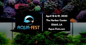 Aqua-Fest 2020
