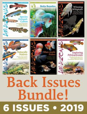 AMAZONAS Back Issue Bundles
