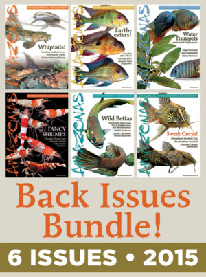 AMAZONAS Magazine Back Issue Bundle - 2015