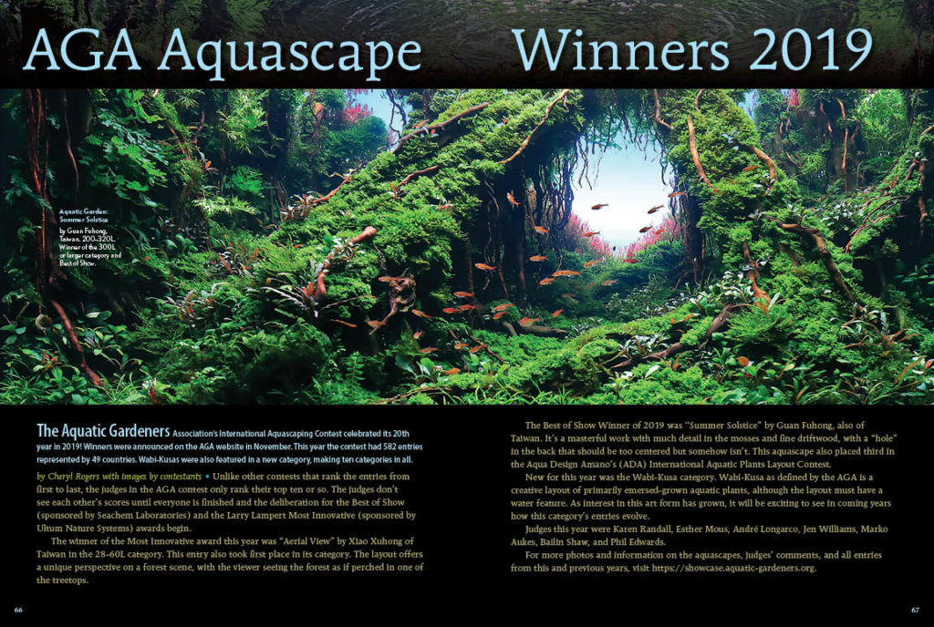 Earlier in the issue, we shared the fundamentals of aquascaping a small, planted aquarium. How far can you go? From beginner to pinnacle of perfection, Cheryl Rogers of the Aquatic Gardeners Association (AGA) introduces the winners of the 2019 AGA International Aquascaping Contest.