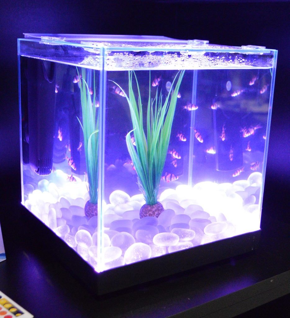 Larger Edgelit models have the ability to change colors. The use of glass as a substrate further enhances the visual effect.