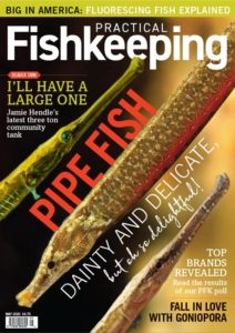 Nathan Hill's editorial features in the May 2020 issue of Practical Fishkeeping, published in the UK.