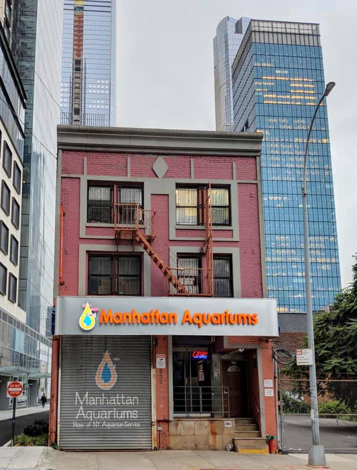 Manhattan Aquariums, located in one of the most heavily impacted cities, has been on a roller coaster ride these past few weeks.
