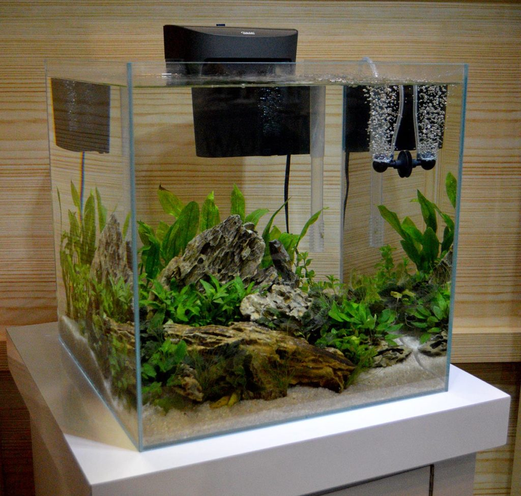 Editor's Note - this tank simply deserved a second look!
