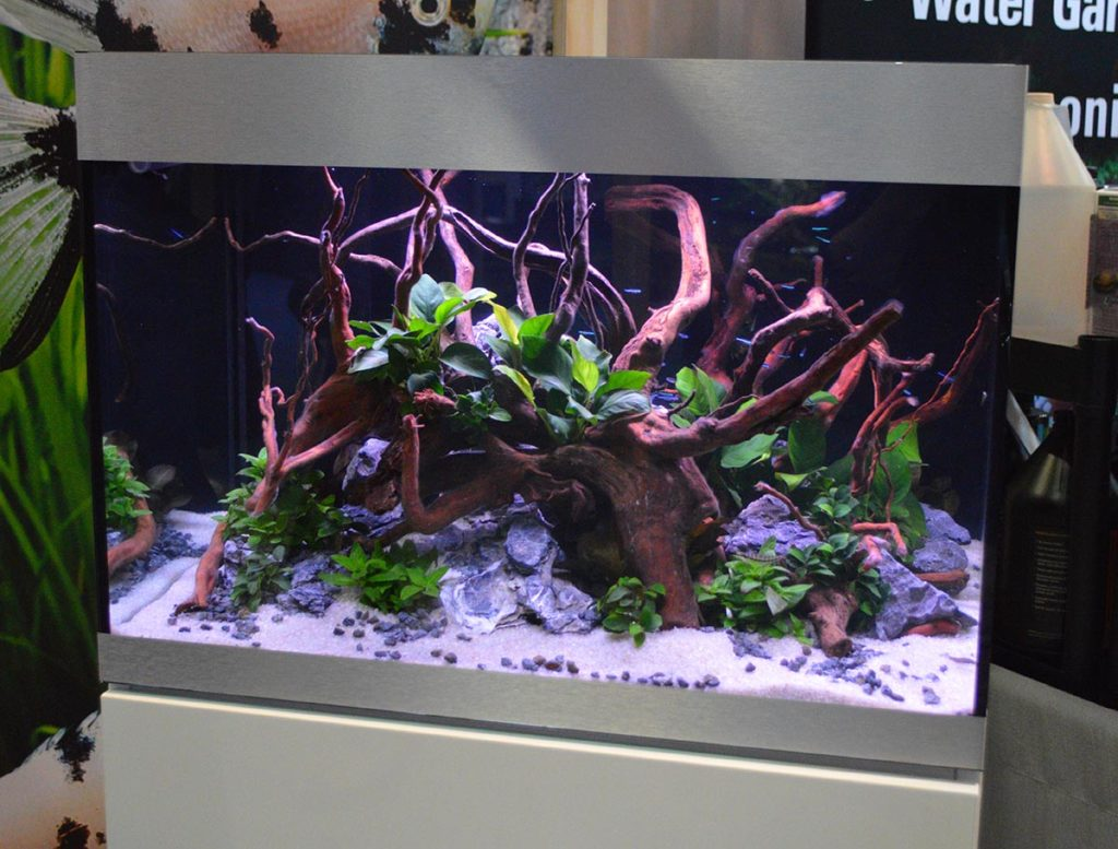 Another beautiful display showcasing the OASE Indoor Aquatics product line.