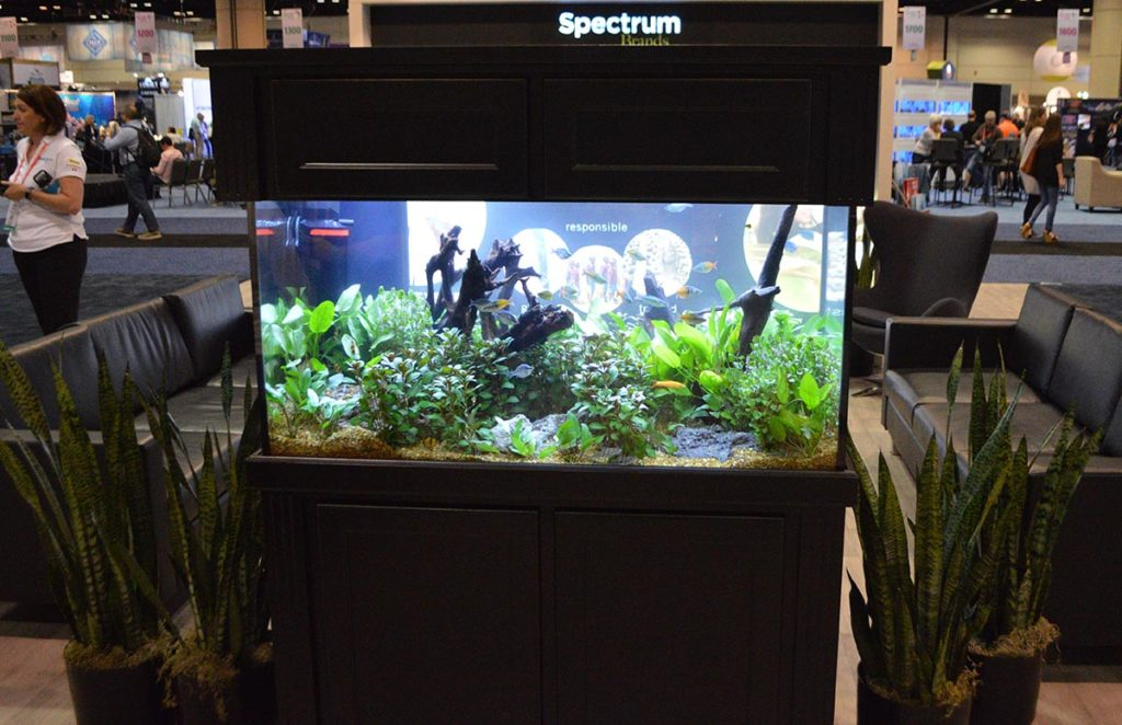 Spectrum Brands decorated their lounging area with a well-scaped rainbowfish-dominated walkaround aquarium.