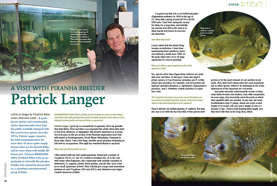 B-grade horror movies and sensationalist stories about piranhas have kept the public morbidly intrigued with this carnivorous species since the 1970s. Patrick Langer, however, has been keeping piranhas for more than 30 years–quite simply because they are his favorite fishes, and he views them with totally different eyes.