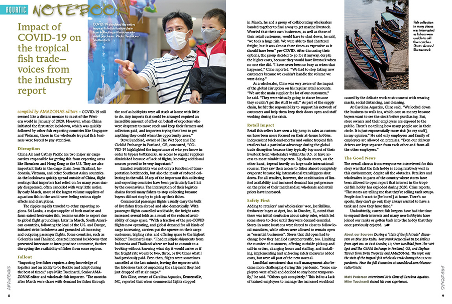 AMAZONAS' Aquatic Notebook brings you concise news and stories of relevance to the aquarium hobby and trade. In this issue, the editorial staff assembles a frontline report on the Impact of the COVID-19 pandemic on the tropical fish trade, the discovery of a new harlequin rasbora species, and the Aquatic Gardeners Association celebrates 20 years of aquascaping competition!