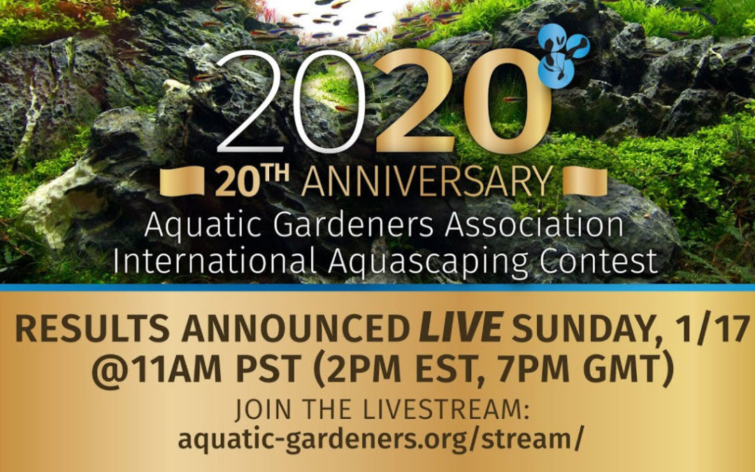 AGA to Livestream 20th Anniversary Aquascaping Contest Results