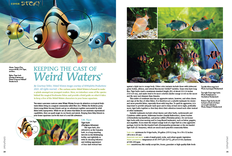The cartoon series Weird Waters is bound to make a splash amongst our youngest readers. Here, Executive Editor Courtney Tobler introduce some of the species behind the magical freshwater fishes and provide a brief guide on what it takes to keep a few of the Weird Waters characters in your home aquarium.