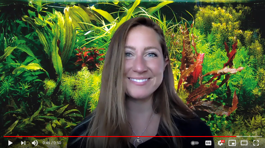 Meet Alex Rose, newest member of the AMAZONAS Team and the host of our new YouTube channel.
