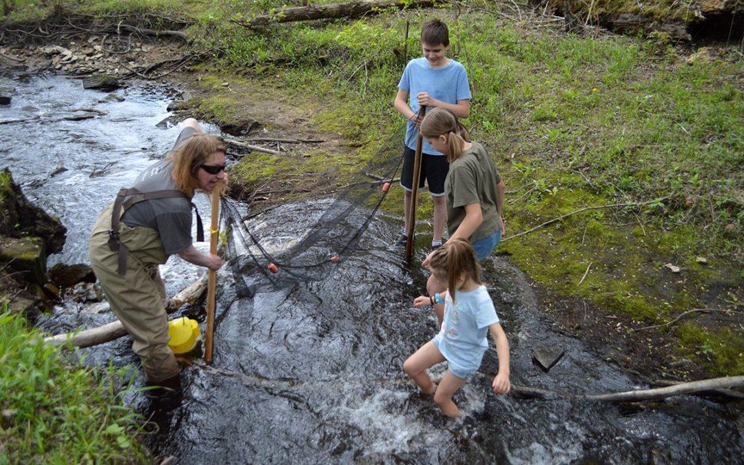 Friday Photospread: Minnesota Darter Hunt, 2021