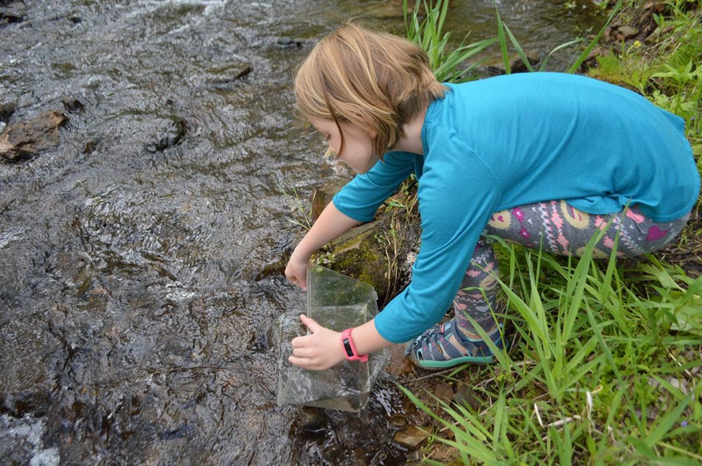 After selections had been made, Audrey helped release the extra fishes back into the creek.