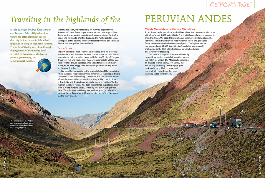 Travel to the highlands of the Peruvian Andes and discover what secrets they hold (could it be rare catfish?!). Anja Katzschmann an Norman Behr return with the story, and pictures, to share their journey!
