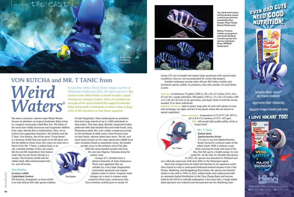 The cartoon series Weird Waters is bound to make a splash amongst our youngest readers. Here, we continue our coverage of the species behind the magical freshwater fishes and provide a brief guide on what it takes to keep Von Kutcha (the frontosa cichlid) and Mr. T. Tanic (a redtail shark), two characters from the show, in your home aquarium.